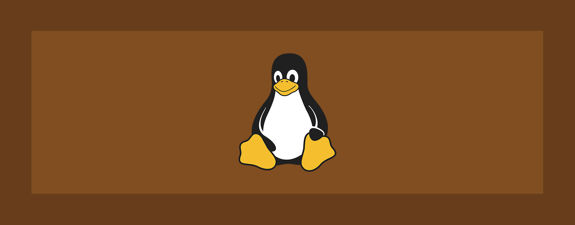 How to install ZSH and Oh My ZSH! in GNU/Linux